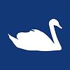 Векторный клипарт: Белый лебедь на синем фоне