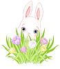 Osterhase mit Krokus Bouquet