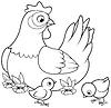Векторный клипарт: Курица и цыплята