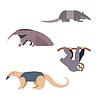 Südamerika Tiere