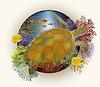 Unterwasser-Karte mit Meeresschildkröte, Vektor-Illustration