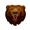 Kodiak-Bär | Stock Vektrografik