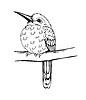 kleiner Vogel auf einem Ast