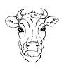 Stylizowane czarno-białe krowy głowy | Stock Vector Graphics