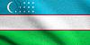 Flag of Uzbekistan waving with fabric texture | Stock Illustration