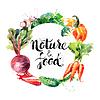 Eco tła menu z jedzeniem. Warzywa akwarela. | Stock Vector Graphics