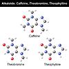 Векторный клипарт: Кофеин, теобромин, теофиллин