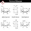Векторный клипарт: Структурная химическая формула и модель глюкозы