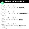 Векторный клипарт: Формы витамина А