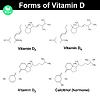 Векторный клипарт: Формы витамина Д
