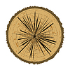 Tree Rings Background. Wood Icon | Stock Vector Graphics