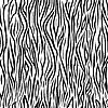 Vektor Cliparts: Nahtlose Zebra Farbmuster