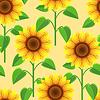 Nahtlose Muster mit Blumen Sonnenblumen