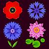 Векторный клипарт: Набор цветов лотоса, василек, тюльпан