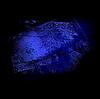 Vektor Cliparts: Grunge-Hintergrund 02 blau