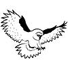 Zabawne sowy w locie | Stock Vector Graphics