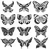 Zestaw dwunastu czarnych motyli | Stock Vector Graphics