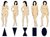 Векторный клипарт: Набор из пяти женских типов фигуры с условным
