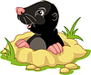 Vektor Cliparts: Mole