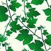 Dekoratives nahtloses Muster Zweige der Weinblätter