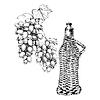 Set von Trauben, Wein mit Hand-Zeichenstil