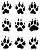 Wolf paw | Stock Vector Graphics