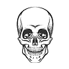 Skull   Stock Vector Graphics