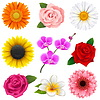Flower Icons | Stock Vector Graphics