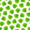 Векторный клипарт: Бесшовные шаблон с листьями