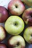 Äpfel auf Holzuntergrund | Stock Foto