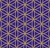 Цветные цветок жизни священного рисунка геометрии | Векторный клипарт