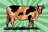 Color spotted farm cow | Stock Vector Graphics