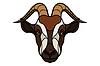Goat head image