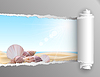 Zerrissenes Papier mit Sommer Hintergrund | Stock Vektrografik