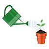 Gießkanne und Pflanze im Topf