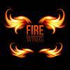 Flügel in Flammen und Feuer. auf schwarz