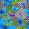 Palm leaves tropical pattern with blue butterfly, | 向量插图