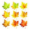 Set mit bunten Blätter im Herbst.
