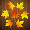 Векторный клипарт: Осенний фон с листьями и текстуру древесины