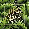 Lato tropikalny tło z liści palmowych. | Stock Vector Graphics