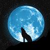 Mond Blick auf Boden. Howling Wolf, Elemente