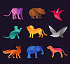 Tier Zoo icons set