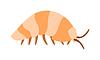Beetle Assel Exoskelett Gürteltier Rüstung INSEC