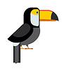 Toucan ramphastos Toco sitzt auf Ast und