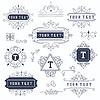 Set Luxus Monogramm Vorlage blüht calligraphi | Stock Vektrografik