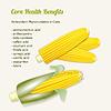 stilisierten frischen reifen Mais in cob