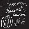 Vektor Cliparts: Herbst-Hand Schriftzug und Kalligraphieentwurf