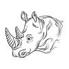 Kopf des Nashorn