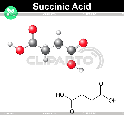 the molecular formula of succinic acid coursework View homework help - hw_chapter 2 from chemistry 101 at qatar university production give the molecular formula, empirical formula, and molecular mass of succinic acid: 6- name these compounds: a) 4.