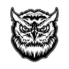 Vector clipart: Owl animal head with angry face, mascot